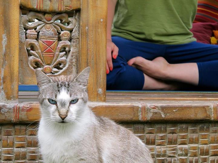 yoga lifestyle Gipsi Yoga Style