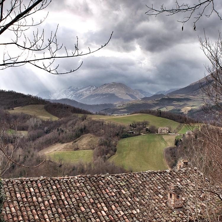 montefortino_04