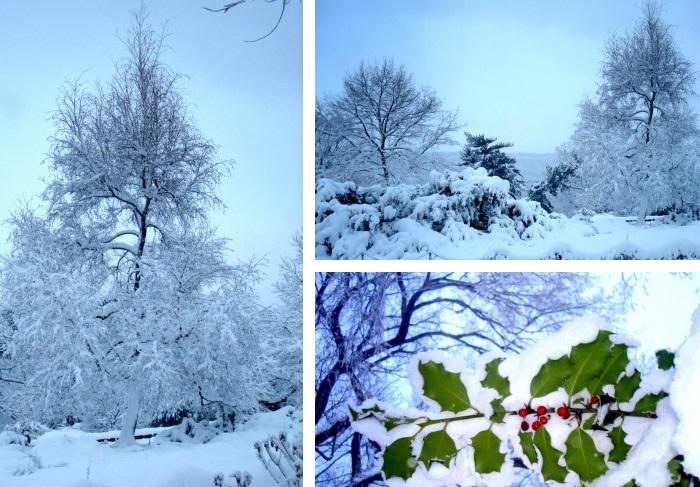 Living_NY_snow_01