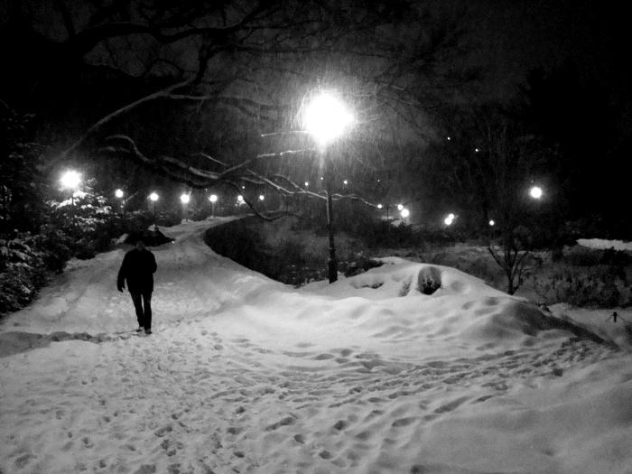 Living_NY_snow_night
