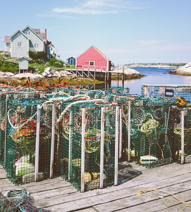 peggy's cove 06