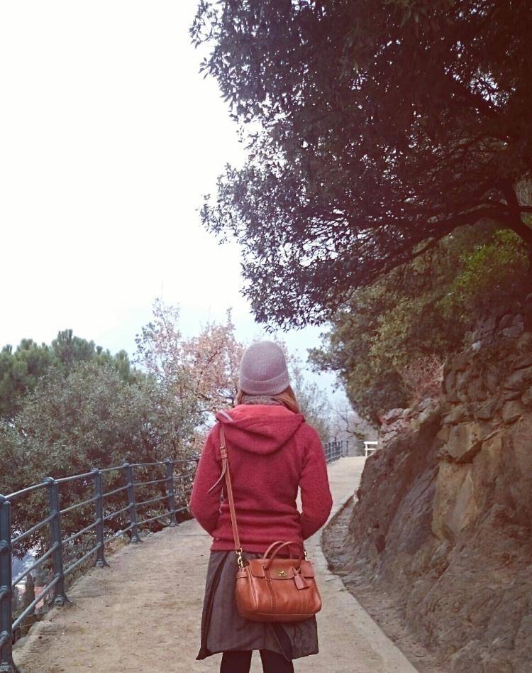 bagagli_montagna_trolley_01