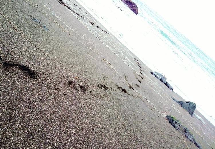 Olivia_beachwear_01