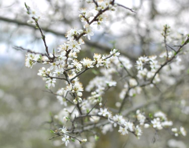 hello_spring_02
