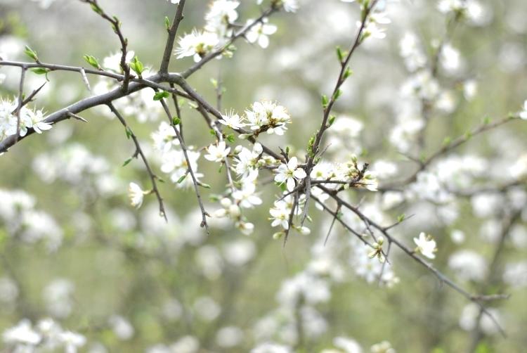 hello_spring_05
